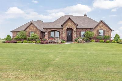 Wise County Single Family Home For Sale: 106 Lajitas Drive