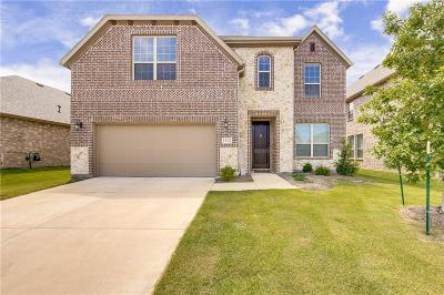 Little Elm Single Family Home For Sale: 1112 Lake Cypress Lane