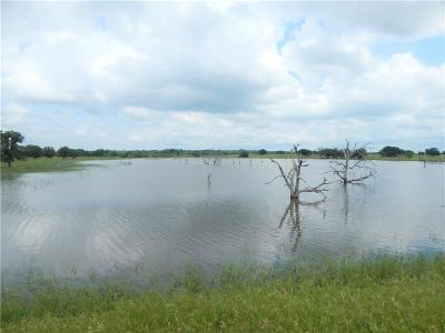 Throckmorton County Farm & Ranch For Sale: 00 Cr 209 Road E