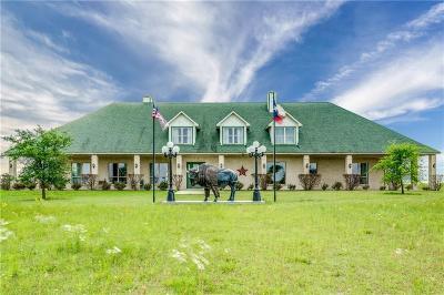 Parker County Farm & Ranch For Sale: 517 Logans Run Road