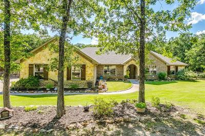 Parker County Single Family Home For Sale: 134 Macanudo Lane