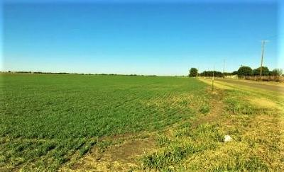 Waxahachie Farm & Ranch Active Option Contract: 591 Holder Road