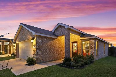 Aubrey Single Family Home For Sale: 1432 Red River Drive