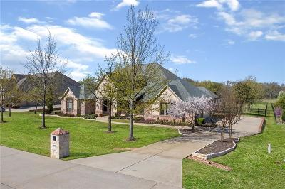 Collin County Single Family Home For Sale: 3301 Twin Lakes Drive