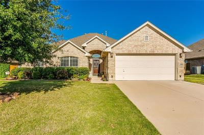 Benbrook Single Family Home For Sale: 3936 Palomino Drive