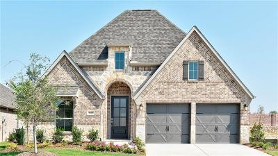 Little Elm Single Family Home For Sale: 9609 Oxbow Lane