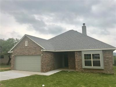 Parker County Single Family Home For Sale: 504 Holiday Hills Drive