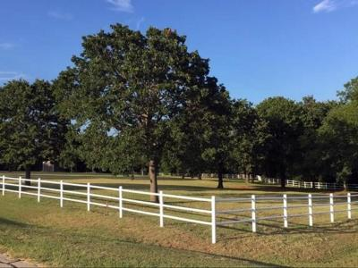 Denton County Residential Lots & Land For Sale: Amber Lane
