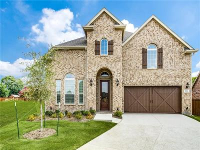 Plano Single Family Home For Sale: 3904 Kindred Lane