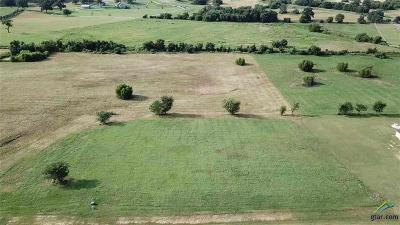 Athens, Kemp Residential Lots & Land For Sale: Lot 355 Grandview