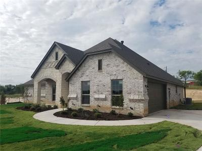 Parker County Single Family Home For Sale: 1019 Merriam Court