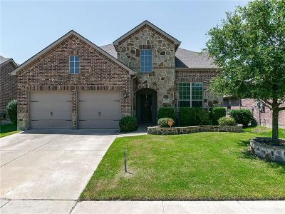 Little Elm Single Family Home For Sale: 1416 Cedarbird Drive