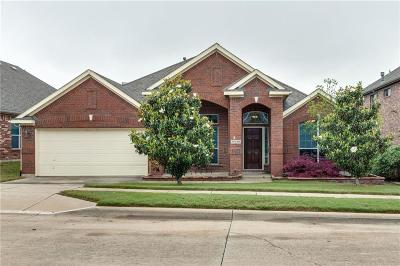 Fort Worth Single Family Home For Sale: 10240 Paintbrush Drive