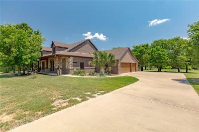 Parker County Single Family Home For Sale: 744 S Sugartree Drive
