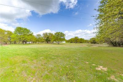Wise County Farm & Ranch For Sale: 8471 S Fm 51