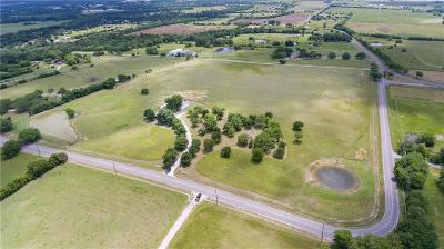Collin County Single Family Home For Sale: 414 Cowan Road