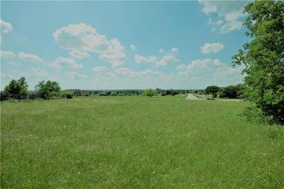 Cedar Hill Single Family Home For Sale: 2134 Rohne Drive