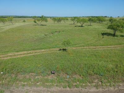 Aledo Residential Lots & Land For Sale: 105 Overlook Drive