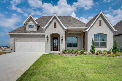 Parker County Single Family Home For Sale: 568 Point Vista Drive