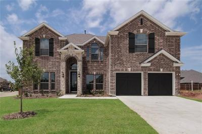 Little Elm Single Family Home For Sale: 1460 Benavites Drive