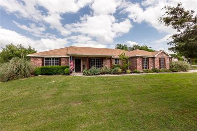 Parker County Single Family Home For Sale: 237 Sandy Creek Trail
