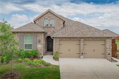 McKinney Single Family Home For Sale: 4004 Bamboo Trail