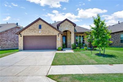 Little Elm Single Family Home For Sale: 1316 Roadrunner Drive