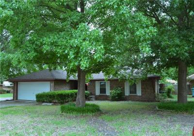Sherman Single Family Home For Sale: 3114 Arkansas Circle