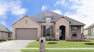 Denison Single Family Home For Sale: 3717 Fawn Meadow Trail