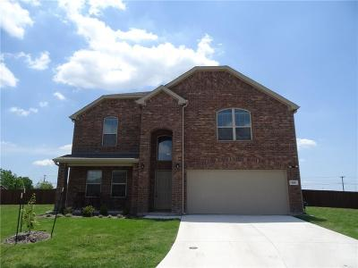 Anna Single Family Home For Sale: 520 Brook View Court