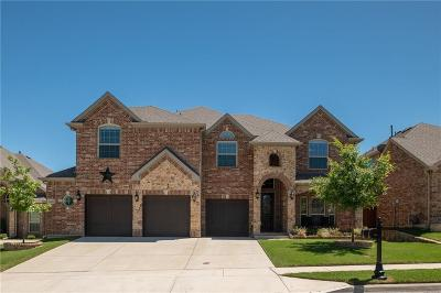 Fort Worth Single Family Home For Sale: 4308 Waterstone Road