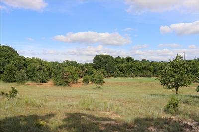 Weatherford Farm & Ranch For Sale: 1??? Zion Hill Loop