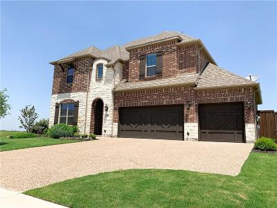 Prosper Single Family Home For Sale: 900 Waterview Drive