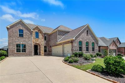 Collin County Single Family Home For Sale: 1915 Legendary Reef Way