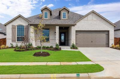 Denton County Single Family Home For Sale: 1121 Bridle Path Drive
