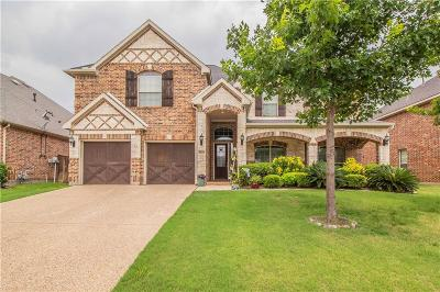 Grand Prairie Single Family Home For Sale: 3028 Nadar