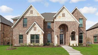 Frisco Single Family Home For Sale: 14253 New Braunfels Drive