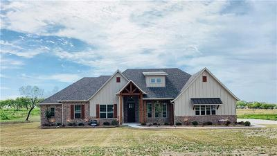Parker County Single Family Home For Sale: 112 Overlook Drive