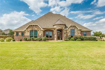 Burleson Single Family Home For Sale: 113 Oakview Court