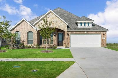 Frisco Single Family Home For Sale: 14487 Shady Grove Lane