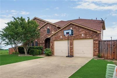 Dallas County Single Family Home For Sale: 802 Banbury Court
