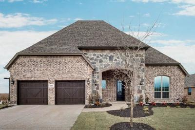 Prosper Single Family Home For Sale: 1010 Waterview Drive