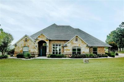 Parker County Single Family Home For Sale: 125 Ellis Creek Drive