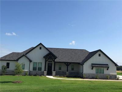 Wise County Single Family Home For Sale: 127 Bluff Ridge Court