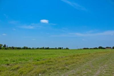 Angus, Barry, Blooming Grove, Chatfield, Corsicana, Dawson, Emhouse, Eureka, Frost, Hubbard, Kerens, Mildred, Navarro, No City, Powell, Purdon, Rice, Richland, Streetman, Wortham Commercial Lots & Land For Sale: S 41st Street