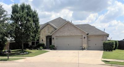 Little Elm Single Family Home For Sale: 1529 Pelican Drive