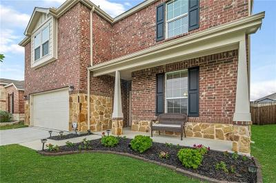 Little Elm Single Family Home For Sale: 3129 Layla Creek Drive