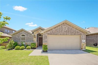 Parker County Single Family Home For Sale: 14605 San Pablo Drive