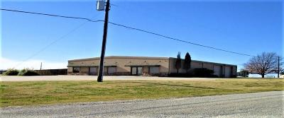Grayson County Commercial For Sale: 4423 N State Highway 91