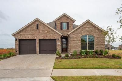 Little Elm Single Family Home For Sale: 7029 Prairie Grass Way